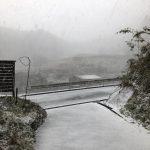 また雪ですね( T_T)